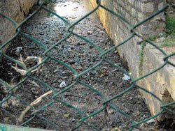Drain in HRBR Layout posing serious health risks
