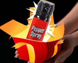 Goa scientist arms women with pepper spray
