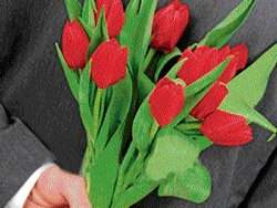 Flowers to match your beloved's zodiac