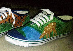 Using a shoe for a canvas