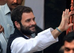 Rahul will lead Cong in next polls, says AICC
