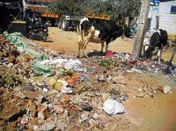 Palike ready for biomining waste, but awaits govt nod