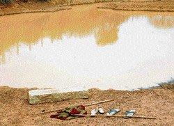 Woman, niece drown in village tank