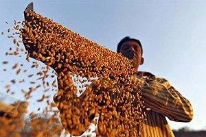 No debate on Food Bill in LS