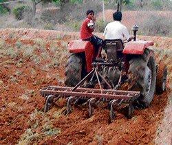 CN Halli farmers left in  lurch as rain plays truant