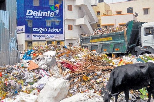 Residents drag Palike to court over dumping of waste