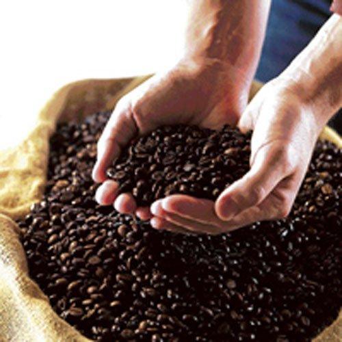 Global coffee exports up 7%, says ICO