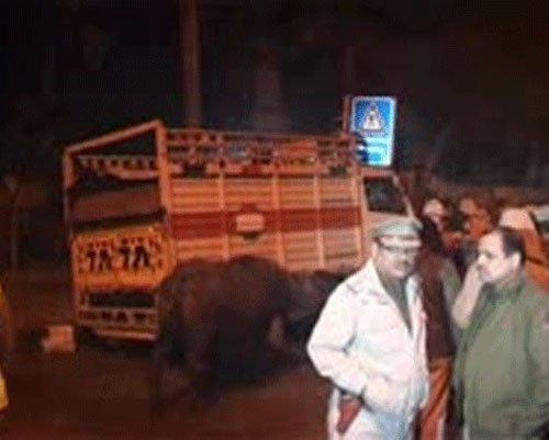 NHRC seeks explanation over Assam shootout