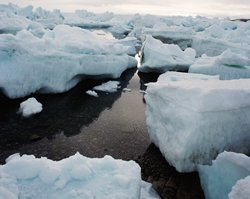 India looks forward to using sea route along Arctic