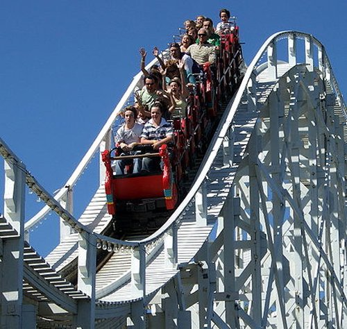 US woman dies after falling off roller coaster