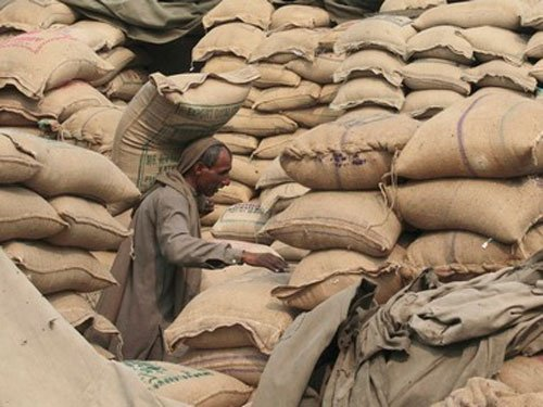 Govt seeks support to pass food bill