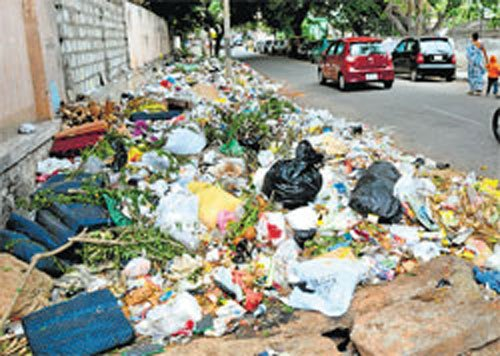 'Segregate garbage or pay fine'