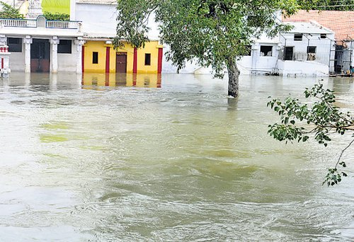 Tale of extremities unfolds  as Cauvery brims over