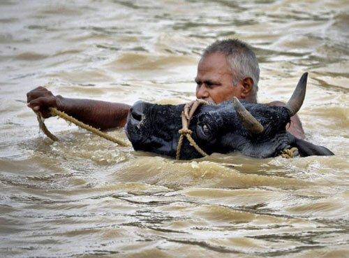 190 people killed in Bihar floods: Nitish makes aerial survey