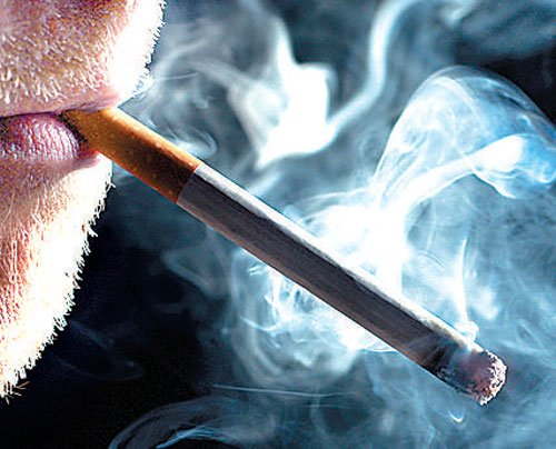 Central labs to test tobacco products not operational