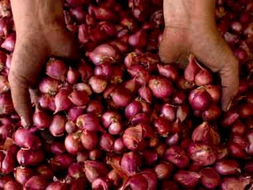 Onion prices won't come down any soon, say dealers