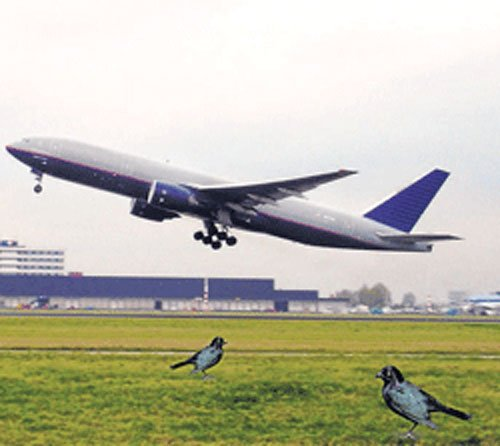 Tata, Singapore Airlines join hands again for a new carrier