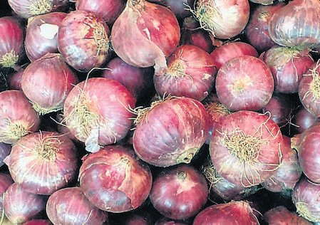 Price squeeze on onion exports to ease supplies