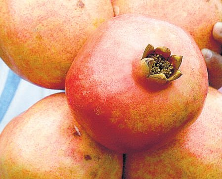 Maiden pomegranate fair in City from today