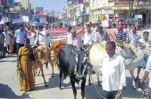 Farmers demand grazing land