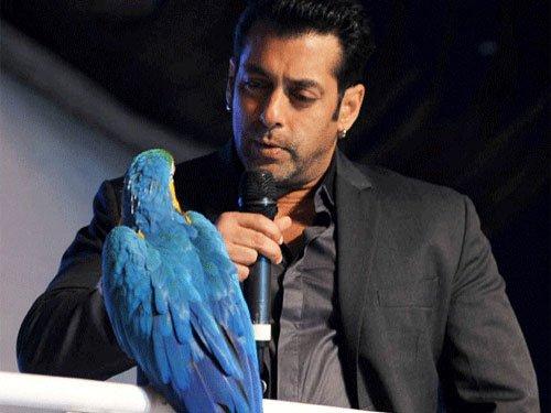 Didn't want to waste Salman's talent in a cameo: Divya Kumar