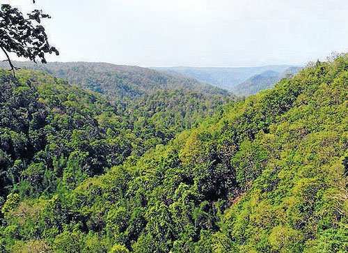 Western Ghats opened for hydro-power projects