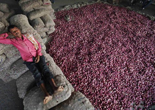 Don't eat onions, prices will dip, SC tells petitioner