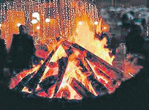 The warmth of Lohri bonfire spreads good cheer