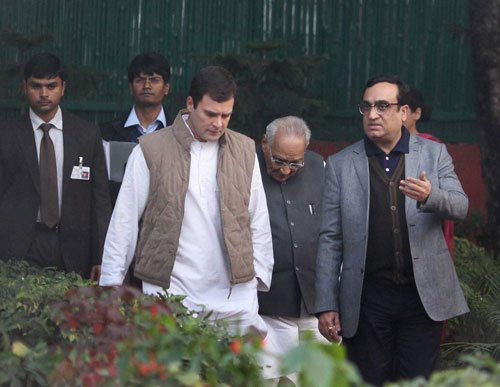 Ready for whatever Congress wants me to do: Rahul