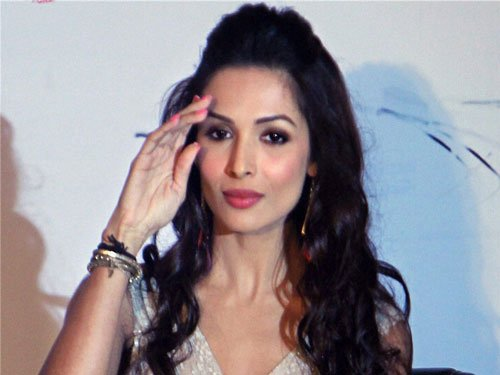 I've just a cameo in 'Happy New Year': Malaika
