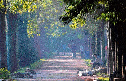 North Corpn to set up women-only parks