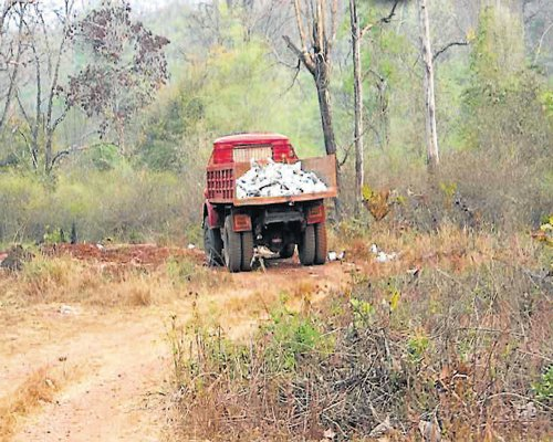Heavy equipments used inside Bhadra reserve: Greens activists
