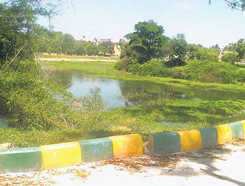 Land sharks eye a slice of Narasipura lake; pressure Palike to give up claim