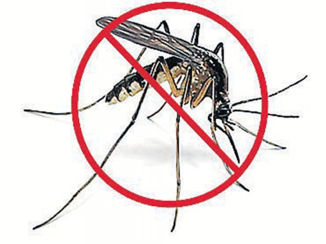 Scientists identify target for treating dengue