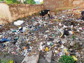 HC seeks details of money spent on clearing garbage