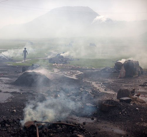 Coal India sacks 126 workers in Odisha