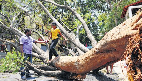 Parts of B'lore South go without power