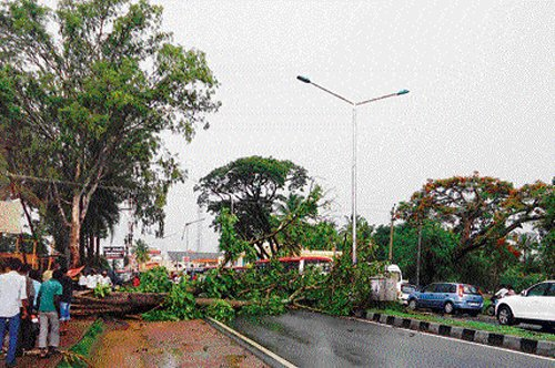 Rain lashes many parts of State