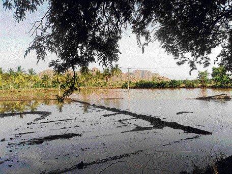 Rain disrupts life in Pavagad taluk