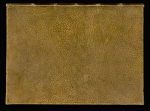 Old book in Harvard library is bound with human skin