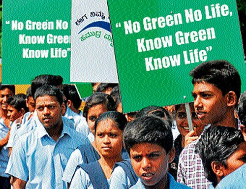 'Sustainable development key to save green'