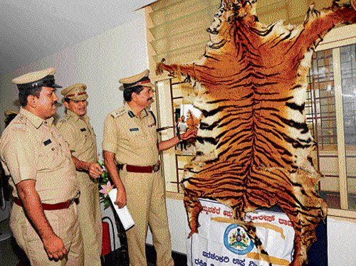 Four deer, tiger pelts seized
