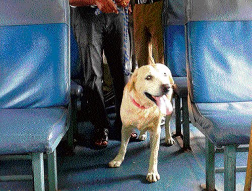 Bomb scare in train turns hoax