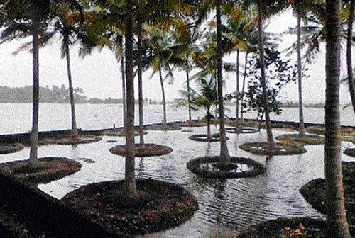 Heavy rain in Malnad region, U-K dist