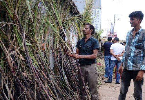 State govt cornered over cane price