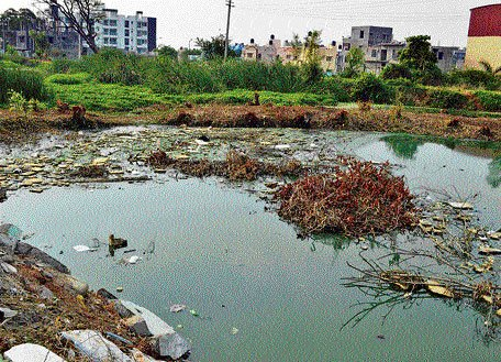Growing garbage menace ups nitrate content in lakes