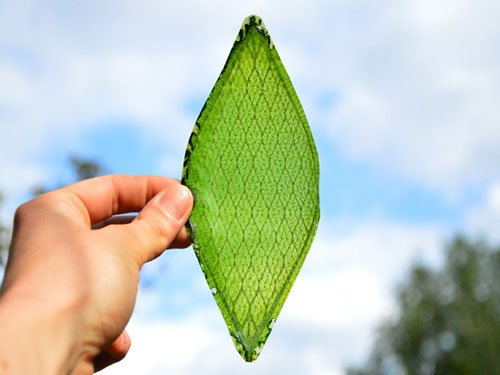 First man-made biological leaf to make oxygen for space travel