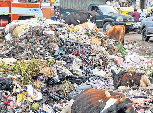 Citizens seek Centre's intervention to rid City of garbage menace