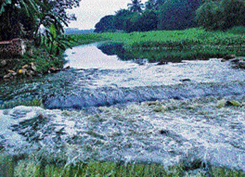 Treated water from Bellandur lake may cater to industries