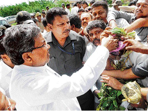 Cabinet to decide on hiking compensation to farmers: CM
